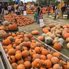 Pumpkin Patches Cincinnati Ohio Area by Shaw Farms 44 Photos U0026 23 Reviews Fruits U0026 Veggies 1737