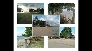 100 Absolute Beach Front Beach Front Land In San Remigio Cebu