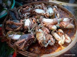 cuisine vietnamienne le meilleur de la cuisine vietnamienne