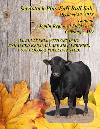 Seedstock Plus Fall Bull Sale By American Gelbvieh Association - Issuu Clayton Reed Xray Tech Janx Linkedin November 2017 Gelbvieh World By American Association Issuu Pace Hshot Service Home Facebook The Best And Worst Of The Rickshaw Run April Edition Troy Manchaca President Gulf States Trucking October Ramrod 2014 Youtube Vintage Zippo Cigarette Lighter Boxes Fuel 1968 Postmark Ramrod Broadcasting Iifeb Johnny Smith Transportation Codinator Inc