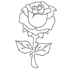 Printable Beautiful Rose Coloring Page
