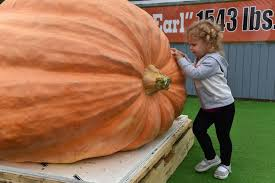 Pumpkin Picking Farms In Maryland by Big Earl U0027 Is A Big Draw At Cockeysville Garden Center Baltimore Sun