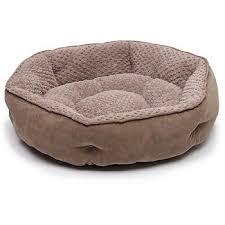 Cat Beds Petco by Amazon Com Petco Memory Foam Hexagonal Nest Dog Bed Pet Beds