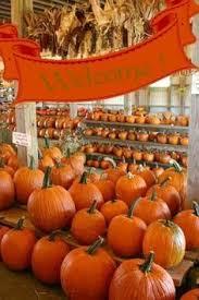 Pumpkin House Kenova Wv Hours by The Pumpkin House Kenova West Virginia Virginia Photo S And House