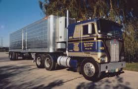 Dandy Distributers | Semi Trucks, Peterbilt 379 And Peterbilt