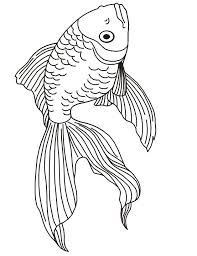 Koi Fish Coloring Book