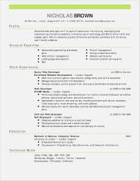 Resume Examples 14 New Functional Template Word Samples