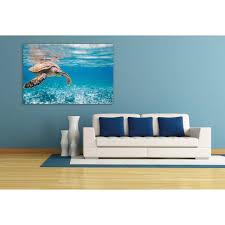 wall acrylglasbild schildkröte auf reisen