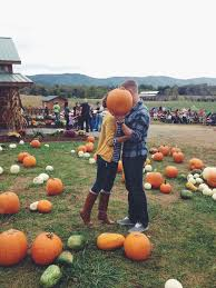 Pumpkin Patch Louisburg Nc by 8 Best Pics Images On Pinterest News Couples And Gifts