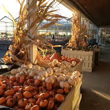 Apple Pumpkin Picking Queens Ny by Samascott Orchards 45 Photos U0026 29 Reviews Fruits U0026 Veggies 5