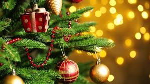 Tabletop Live Christmas Trees by How To Keep Your Christmas Tree Alive Through The Holidays Today Com