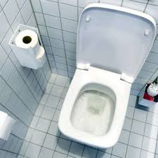 toilette reinigen so wird das klo sauber ganz ohne chemie