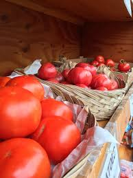 Basses Pumpkin Farm Muskego Wi by Winterize Yourself