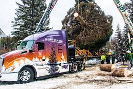 Whitewood Transport Selected To Haul The 2017 U.S. Capitol Christmas ... Mt Garfield Trucking About Us Lunderby Llc June 2 Butte Mtcokeville Wy Beam Bros Crawford Va Rays Truck Photos 24 Missoula To Cut Bank Mt Jim Palmer On Twitter Whoever Said That Vans Arent Cool Billings Towing 406 2482801 Repair I90 Montana Part 5 Dead Dozens Hurt When School Bus Collides With Dump Truck In Home Mtpleasanttrfcom Accessible Baker Transportation Seattlegov