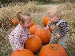 The Great Pumpkin Patch Pueblo Colorado by Happy Apple Farm In Penrose Co Parent Reviews U0026 Photos Trekaroo