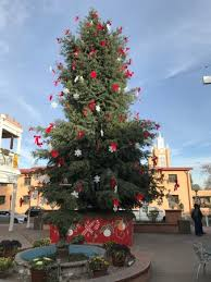 Tumbleweed Christmas Trees by Christmas Tree On The Square Picture Of Albuquerque Old Town