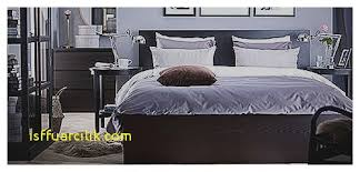 Ikea King Size Bed by Dresser Best Of Hemnes Dresser Gray Brown Hemnes Dresser Gray