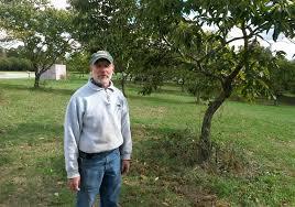 Millers Christmas Tree Farm Ohio by Charles Dickens Gypsy Road Trip