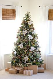 Christmas Tree Names Ideas by Nice Names Of Christmas Trees Part 1 Christmas Tree Names Of