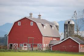 Written In Lynden: Red Barn, White Barn, Foggy Barn, Too. Gambrel Roof Barn Connecticut Barns Mills Farms Panoramio Photo Of Red White House As It Should Be Nice Shed Clipart Red Clip Art Fniture Decorating Ideas Barn With Grey Roof Stock Image 524303 White Cadian Ii Georgia Okeeffe 64310 Work Art Farmhouse With Galvanized Lights From Barnlightelectric Home Design And Doors Architects Tree Services Oil Paints Majic Ana Classic Bunk Bed Diy Projects St Croix County Wi Wonderful Clipart Black Free Images Clip Library