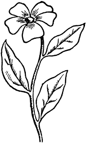 Wildflower Clipart Simple Flower 15