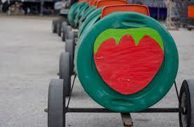 Pumpkin Patch Festival Sarasota by Fruitville Grove Put A Sweet Twist On Its Traditional Pumpkin