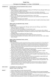 Download Director Government Relations Resume Sample As Image File