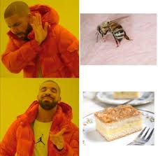 just german kuchen things memes