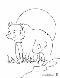 Forest Animal Coloring Pages