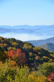 Pumpkin Patch Piedmont Nc by 406 Best Fall For Fall Images On Pinterest Tourism North