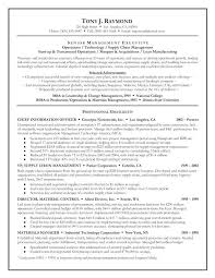 Example Of Resume Summary Formidable Examples Banking On Sample Executive Resumes Golden Dragon