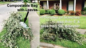 Ace Hardware Christmas Tree Bag by Yard Trimmings Green Waste U2013 Keep Pearland Beautiful