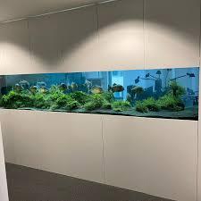 aquarienfreunde wurzen posts