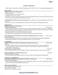 Resume Format For Government Job Best Of Samples Banking Takenosumi