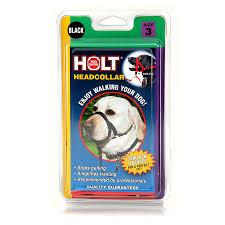 Stop Rat Terrier Shedding by Coastal Holt Headcollars Dog Collars U0026 Tags Petcarerx