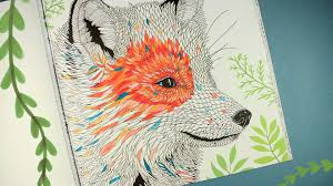 The Menagerie Animal Portraits To Colour