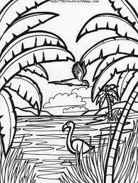 Jungle Printable Coloring Pages Rainforest Animals