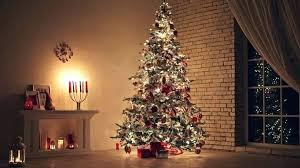 Clear Christmas Tree Lights Vintage Ceramic With Fake Amazing Real Vs Artificial Types Facts