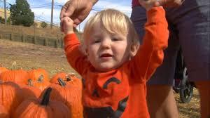 Clayton County Pumpkin Patch by Uncategorized Abc7news Com