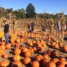 Local Pumpkin Farms In Nj by Depiero U0027s Farm Stand U0026 Greenhouses 71 Photos U0026 51 Reviews