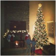 12 Foot Christmas Tree Storage Container Good Alicias Deals In Az Have A Two Story