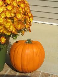 Dryer Vent Pumpkins by Wire Pumpkins Don U0027t Rot Home Hinges Home Improvement Online