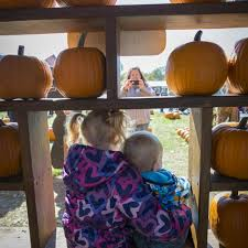 Pumpkin Farms In Southern Maryland by Fall Festivals U0026 Things To Do Visit Maryland
