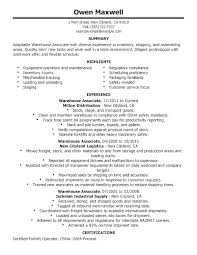 Resume Summary Statement Examples Software Engineer Sample On