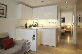 One Wall Kitchen Ideas Elegant Cabinet Small Galley Layout E