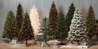 What Kind Of Trees Are Christmas Trees by Best Real Christmas Tree Type Christmas Lights Decoration