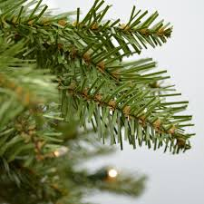 Dunhill Christmas Trees by 6 5 Ft Dunhill Fir Artificial Christmas Tree Clear Lights Msrp
