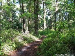 Santos Mountain Biking Gallery – Florida s Natural Wonders