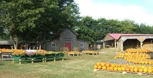 Pumpkin Patch Lafayette La by Walden Farm Pumpkin Patch Presented By Walden Farm