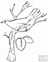 Coloring Pages Birds Nightingale Is Singing
